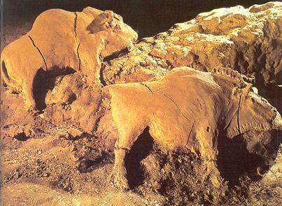 Clay Bison