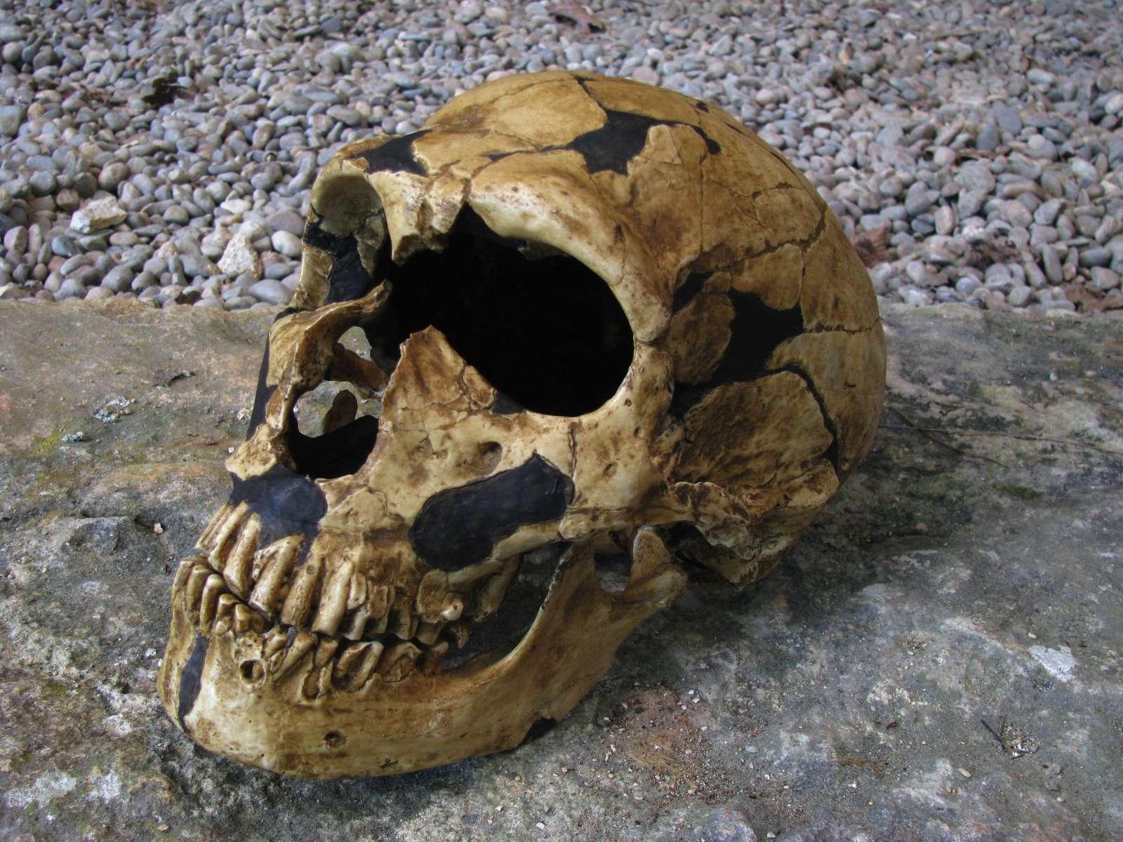La Ferrassie - Neanderthal rock shelter