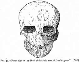Cro-Magnon Front view of the Skull