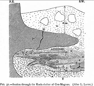 Cro-Magnon cross section