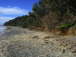 erosion  of the foreshore at Diggers Camp