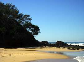 Pandanus and Casuarina trees, rocks, sand and surf