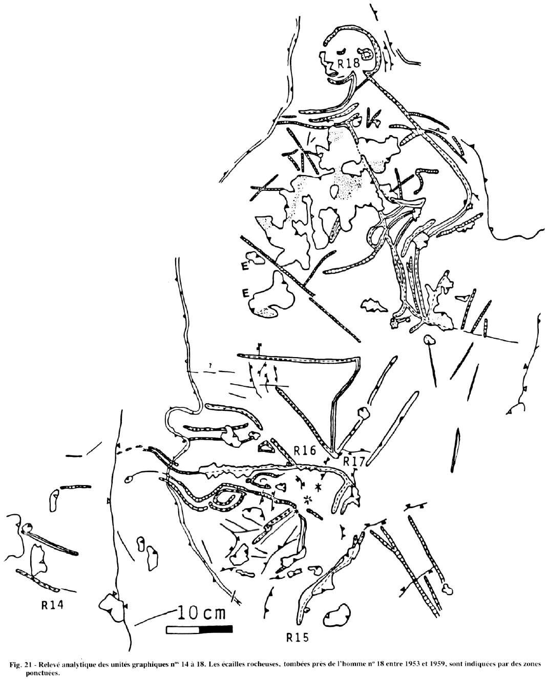The phallus in stone age art grotte du sorcier biocorpaavc Images