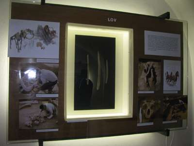 Hunting display