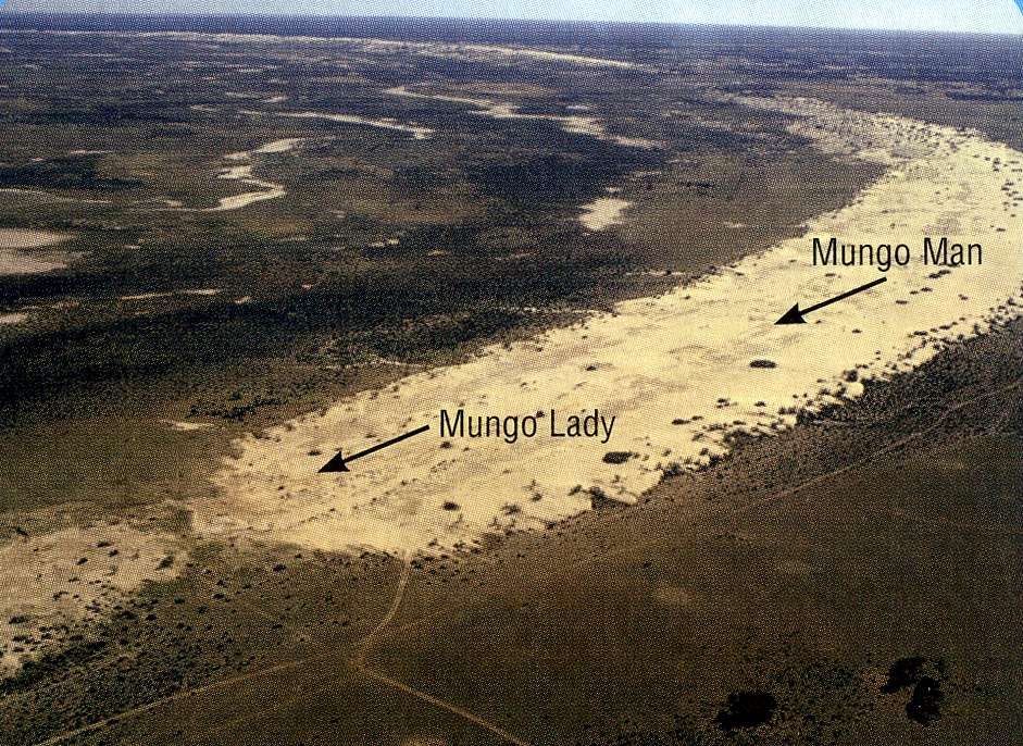 external image mungophotob.jpg