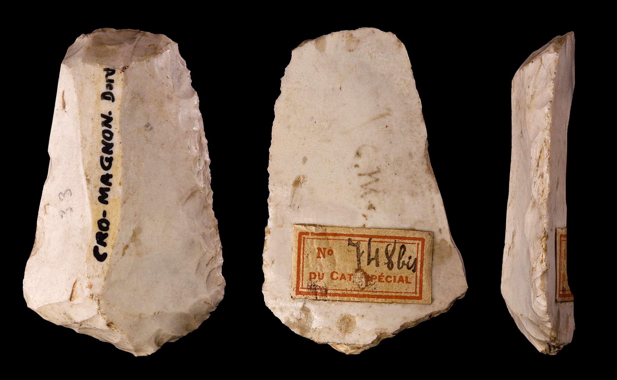 Cro-Magnon tool
