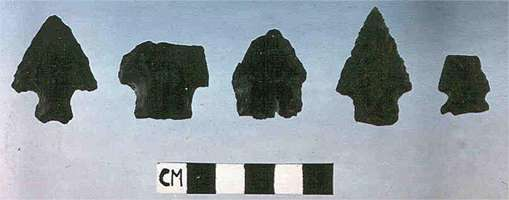meadowcroft archaic points
