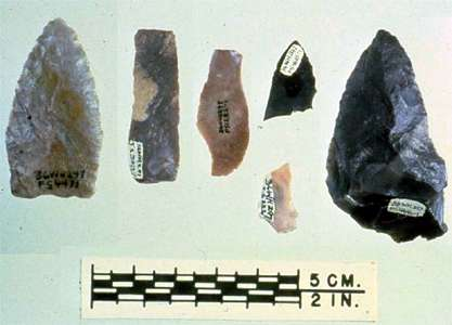 meadowcroft lithic assemblage