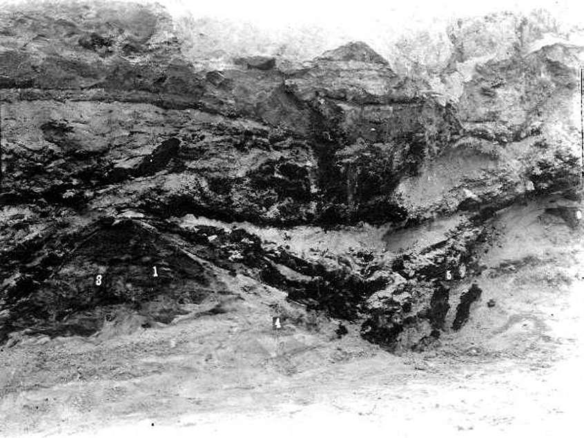 old vero man site