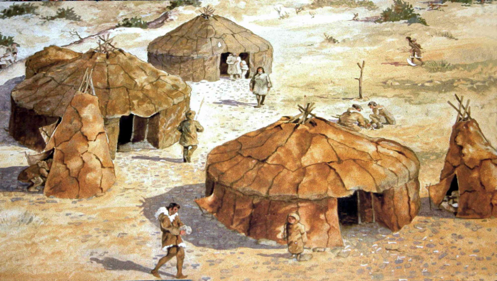 Image result for stone age shelters