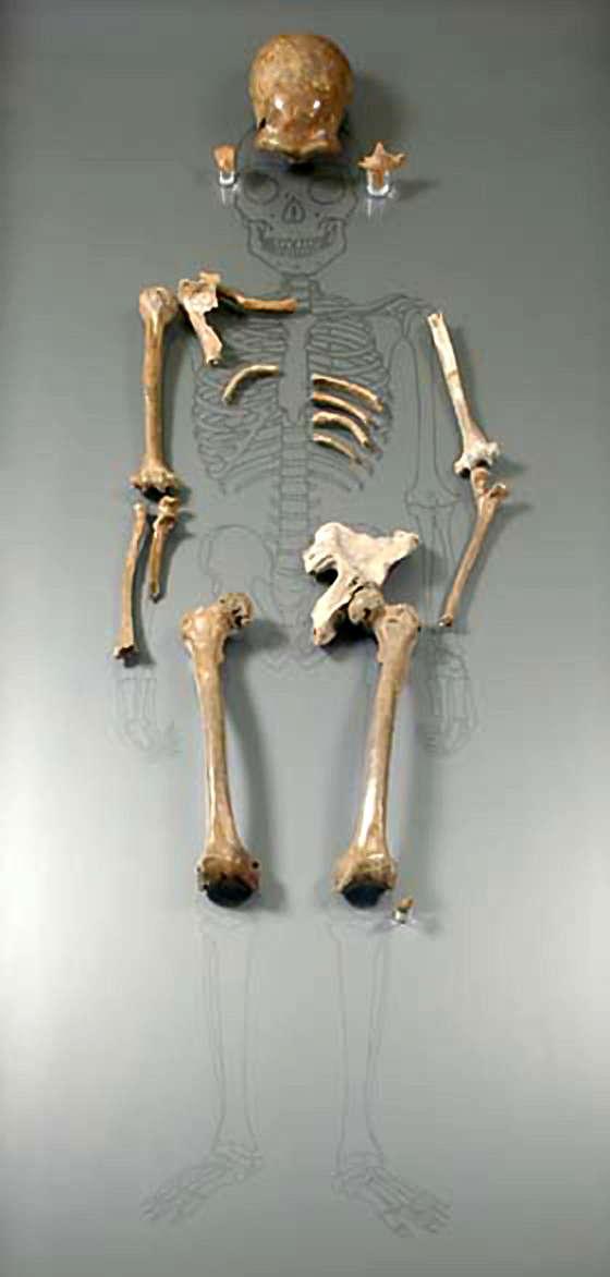 Neanderthalskeleton