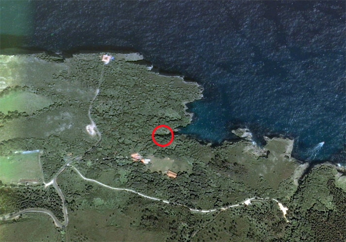 Cueva del Pindal from google earth