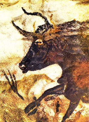 Great Black Bull lascaux