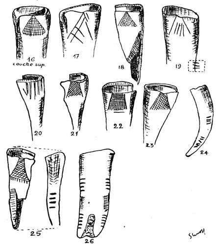 la marche engraved horse  teeth