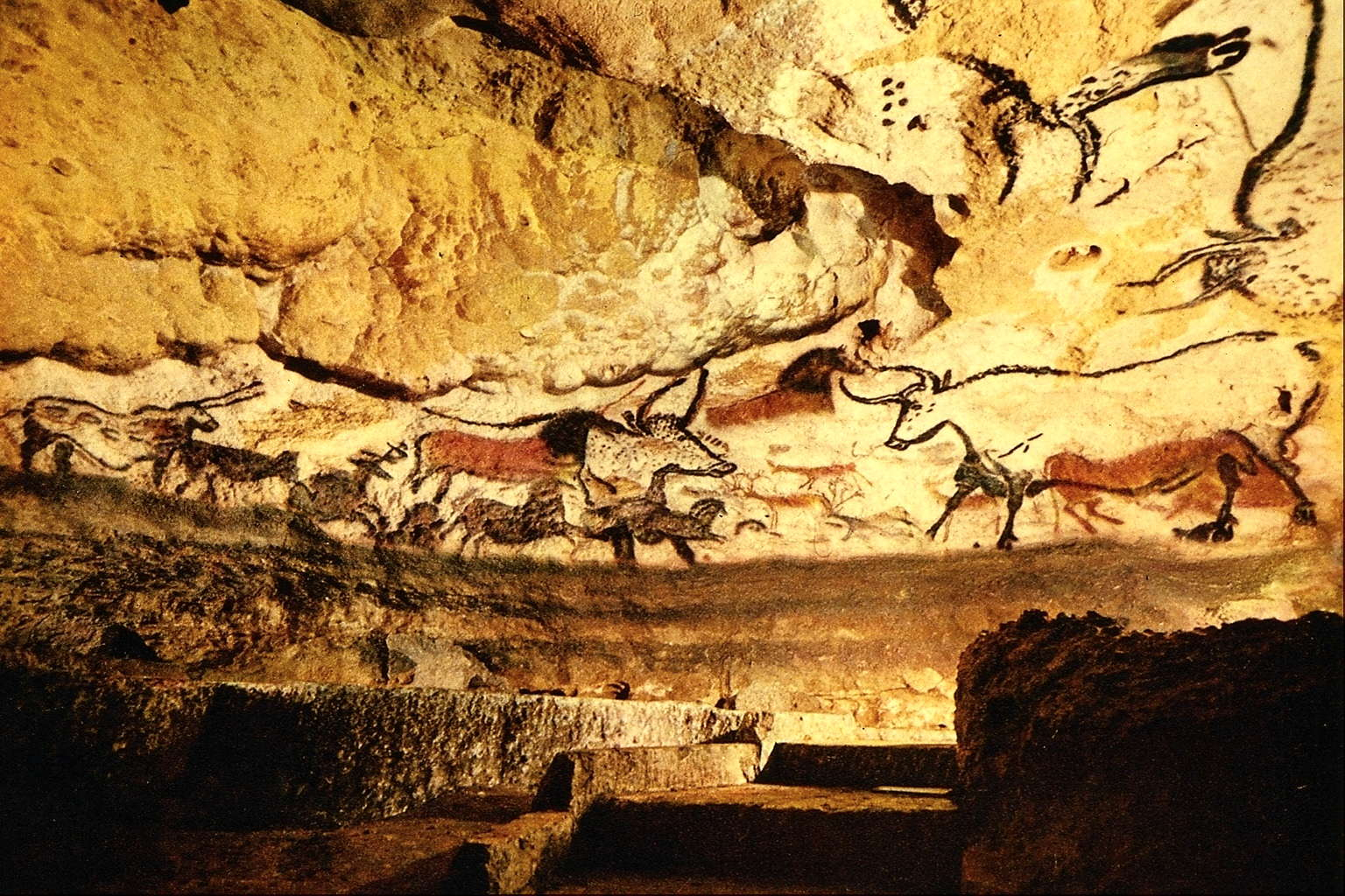 hall of the bulls lascaux In 1983, a copy of a portion of the cave, known as lascaux 2, was opened  on  the wall to portray the snout and the fluffy fur on the throat of the bull  the first  hall is lushly painted, with oxen on both sides, as well as wild.