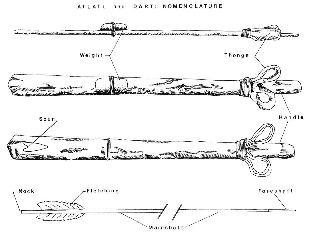 Atlatls, Spear Throwers, and Woomeras