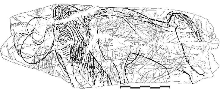 mammoth engraving