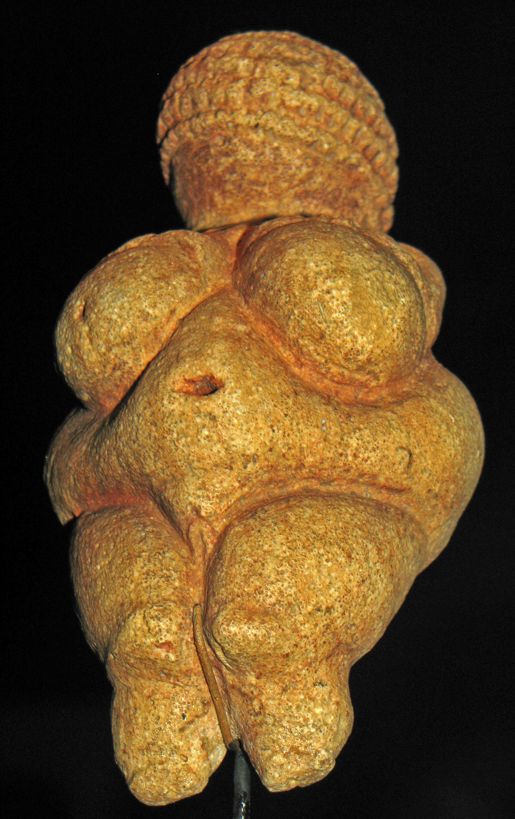 venus of willendorf Whether the venus of willendorf was a fashion symbol will be never answered,  but the fact is that she remains testimony to the fact that obesity has been with us .