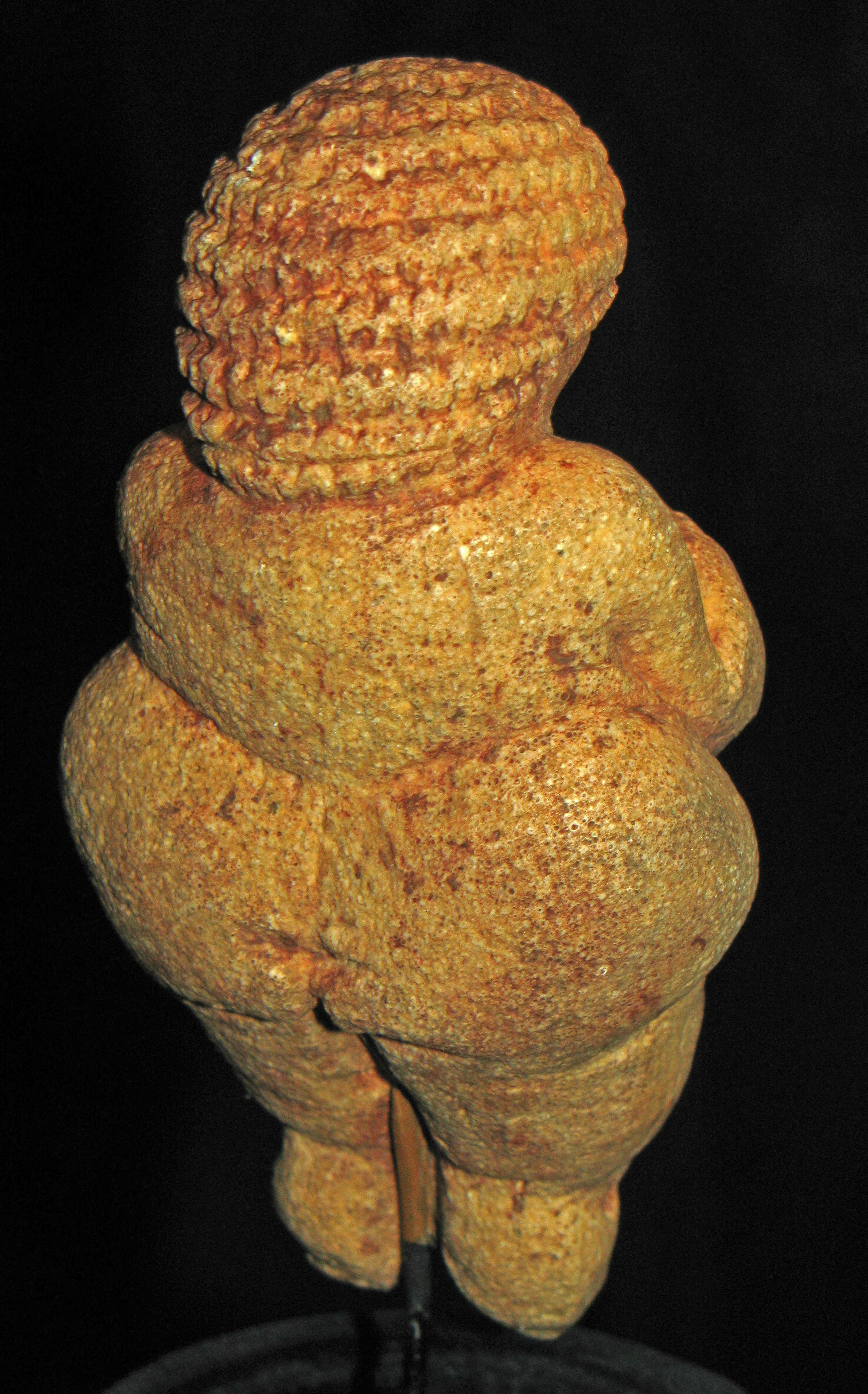 the venus of willendorf Venus of willendorf is named after the site in austria where it was unearthed [6] several similar statuettes and other forms of art have been discovered, and they.