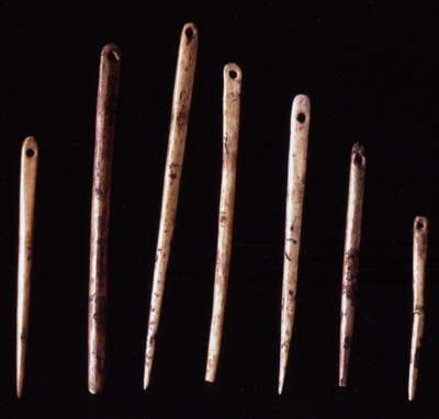 Courbet needles