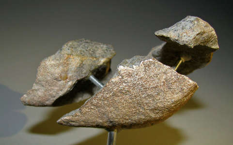 tools from Kenya 2.5 million years old