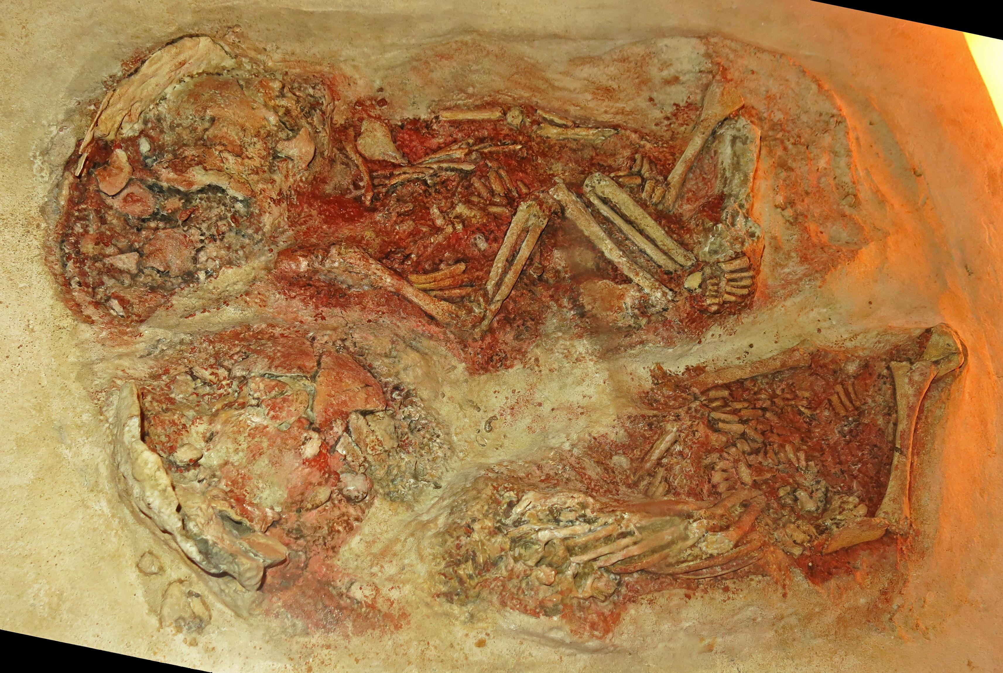 Cặp song sinh 27,000 tuổi Img_0062krems