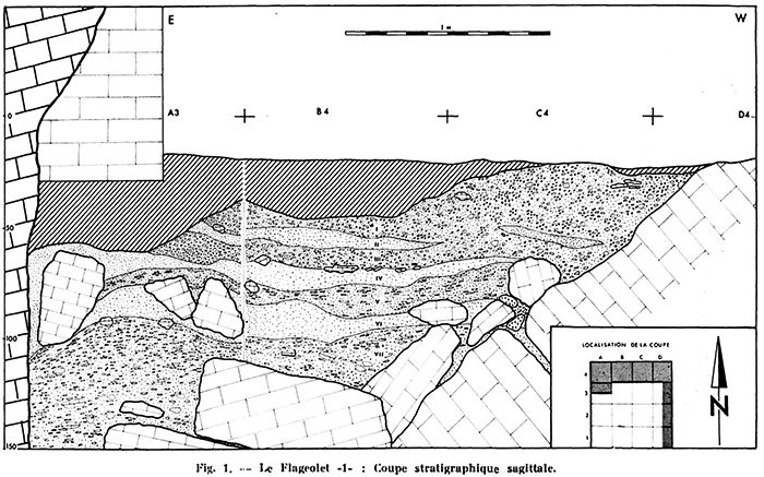 Flageolet section