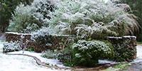 gardenclubrect.jpg