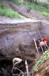 Kurya Excavation